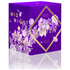 ECOYA Botanicals Evolution Midnight Orchid Candle - Metro Jar: Image 4