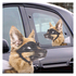 Ride With Car Stickers - Dog: Image 1