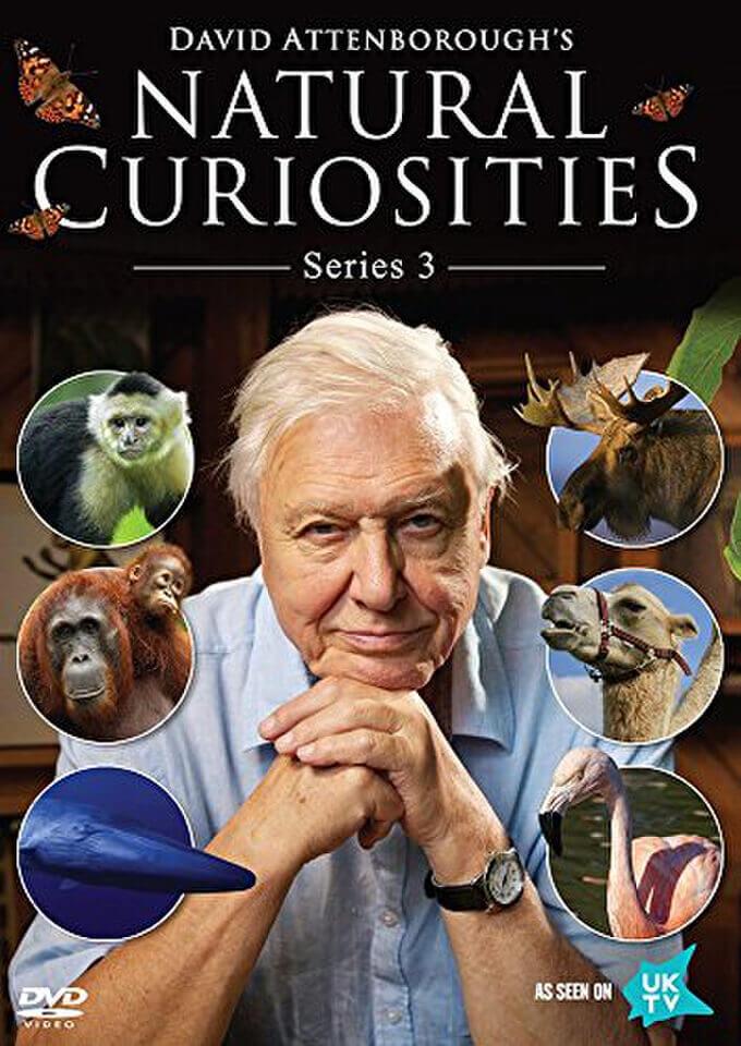 David Attenborough S Natural Curiosities Series 3 Dvd