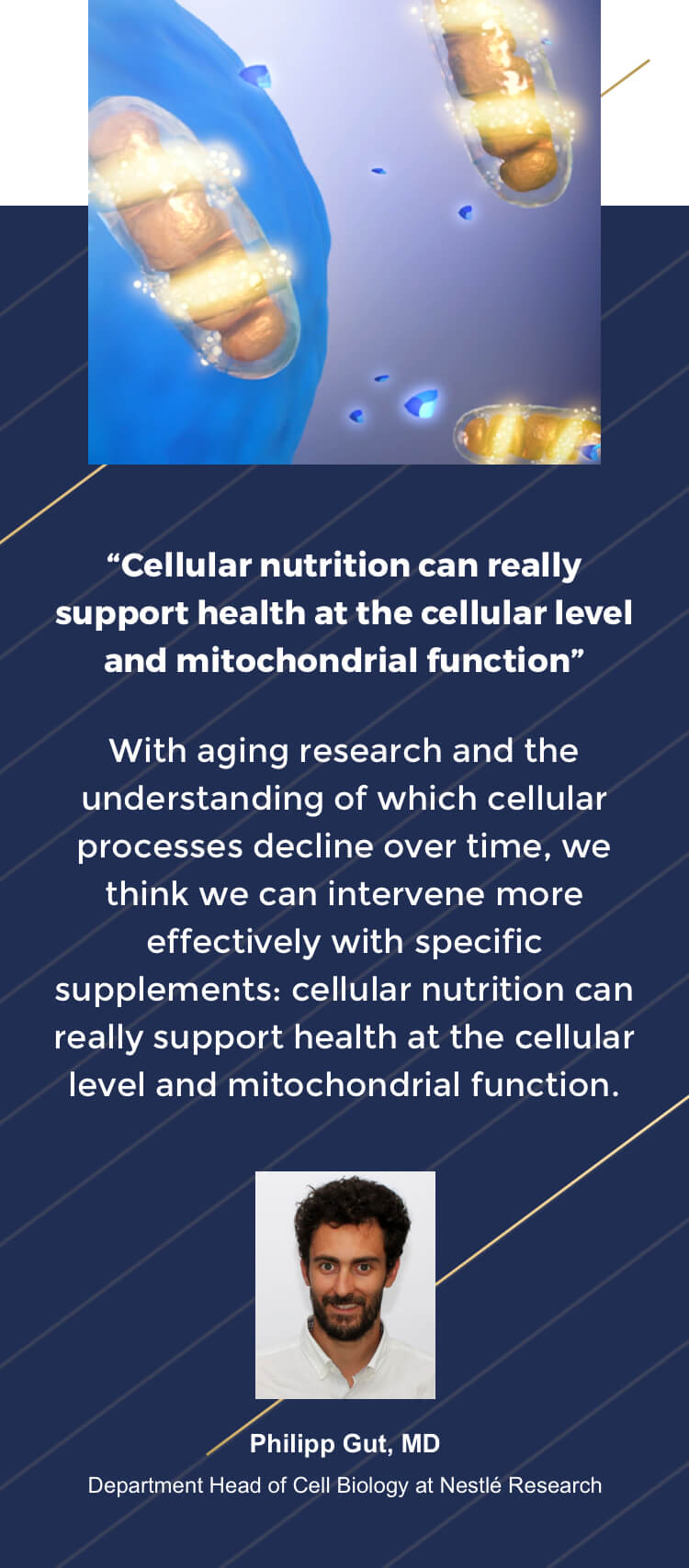 Expert opinion on Cellular Nutrition
