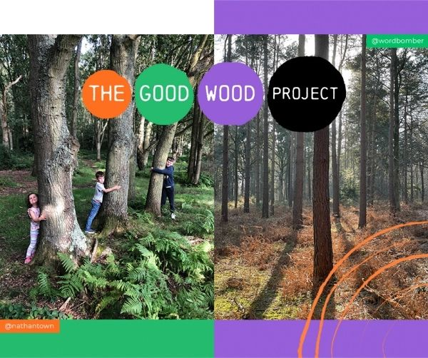 The good wood project