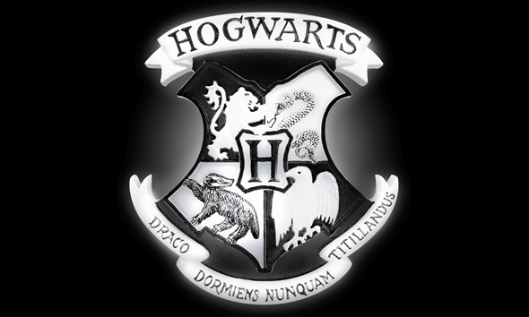 Harry Potter Hogwarts Crest Light Only £16.99