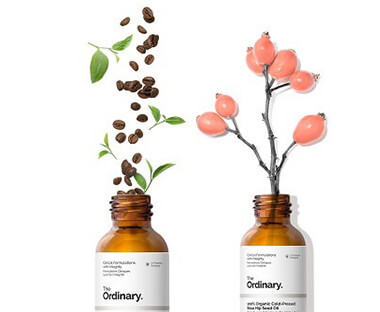 the ordinary feature